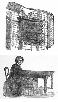 D.D.Home sitting at  a table with the accordion within the cage.